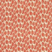 002_Lytton Orange_Sanderson