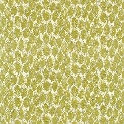 018_Lytton green_Sanderson